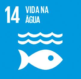 O ODS 14 é sobre Vida na Água.
