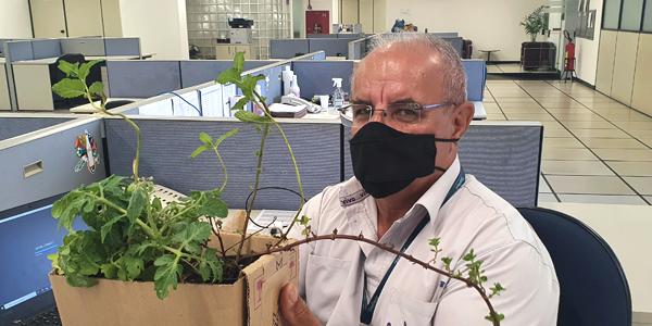Homem está sentado segurando uma caixa com mudas de plantas em atividade na Casa do Vovô Nestor durante a Semana dos Voluntários.