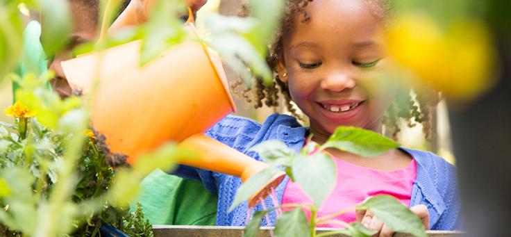 Imagem mostra uma criança em destaque regando uma planta