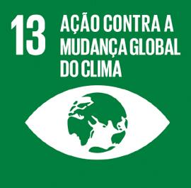 O ODS 13 é sobre Ação contra a Mudança Global do Clima.