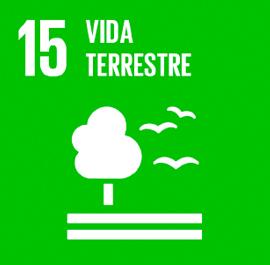 O ODS 15 é sobre Vida Terrestre.