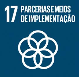 O ODS 17 é sobre Parcerias e Meios de Implementação.