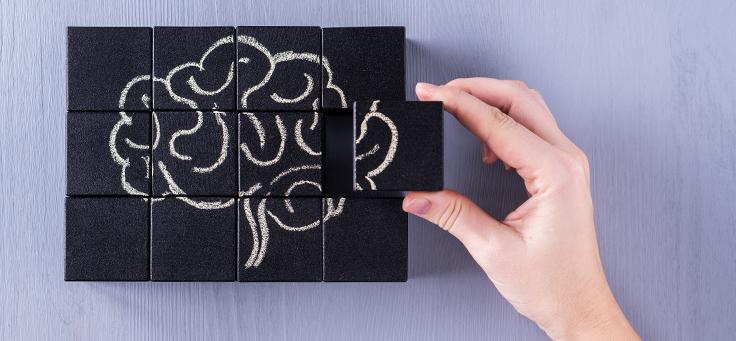 Imagem mostra o desenho de um cérebro dividido em blocos