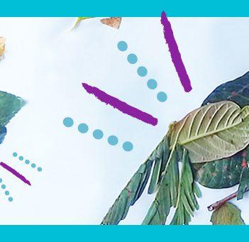 A imagem mostra o desenho de um pássaro feito de folhas
